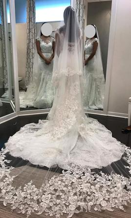 New Un Altered Ivory Veil