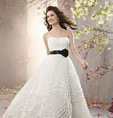 Alfred Angelo 2369