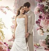 Alfred Angelo 2362