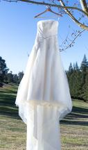 David's Bridal Organza Gown with Fern Embroidery and Net Overlay 16