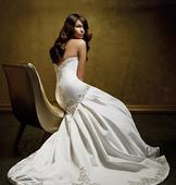 Alfred Angelo 427