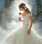 Alfred Angelo Style 206