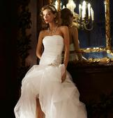 David's Bridal Organza and Tulle High-Low Gown/AI26010039