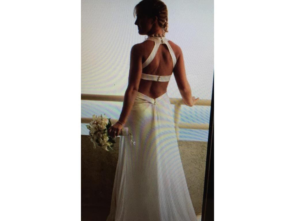 Amy Michelson Swoon, $200 Size: 4   Used Wedding Dresses