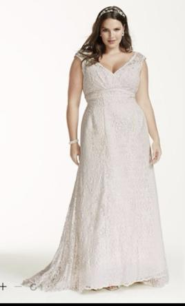 David's Bridal Beaded Lace Trumpet Wedding Dress / 4XL9T9612 22W