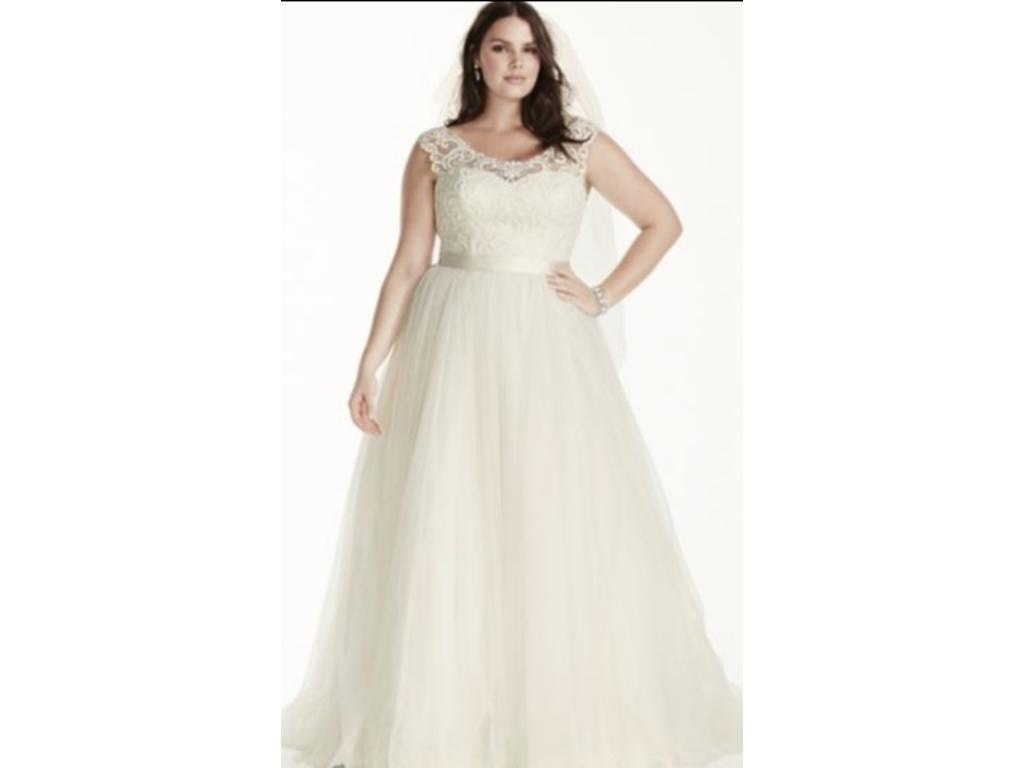Plus Size Wedding Gowns With Sleeves: David's Bridal Tulle Plus Size Wedding Dress With Lace Cap