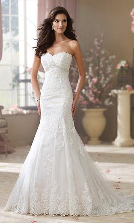 David tutera 214247 499 size 16 new un altered wedding dresses pin it david tutera 214247 16 junglespirit Choice Image