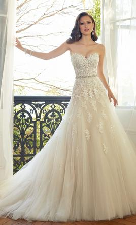 Pin It Sophia Tolli Y11552 Prinia 14
