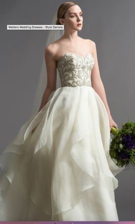 Watters daniela gown style 6072b 500 size 6 used wedding dresses pin it watters daniela gown style 6072b 6 junglespirit Image collections