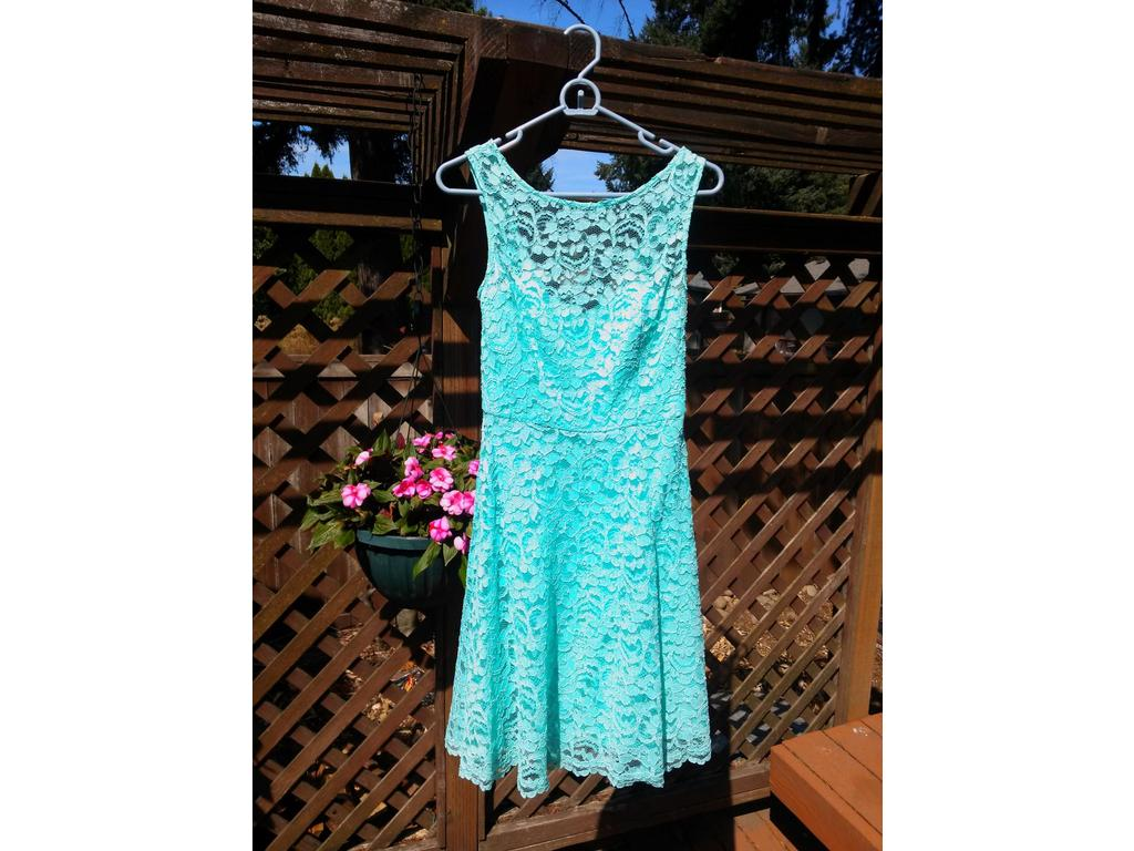 David\'s Bridal Short Sleeveless all over lace/ #F18031, Size: 4 ...