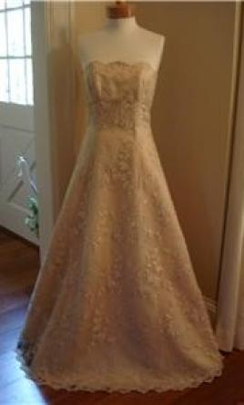 Sue Wong Nt 517 170 Size 6 New Un Altered Wedding Dresses